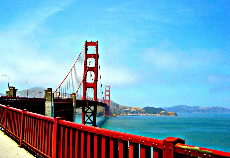 The Golden Gate Bridge towers above all, its great allure a vast threat to jumpers.