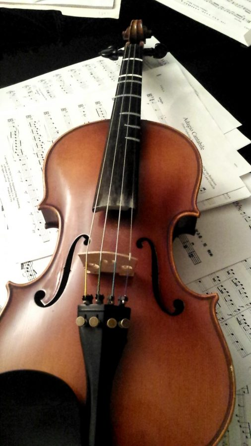 The violin is one of the four instruments that are in  Orchestra. Along with the violin is the viola, cello, and concert bass.  Photo By Sarah Chen
