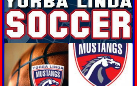 Mustang Sports