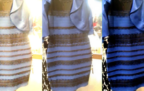 The Science Behind the Legendary Dress