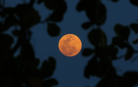 Super Blood Moon and Mooncakes