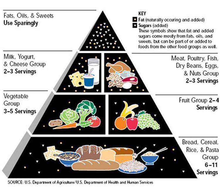 Food+Pyramid