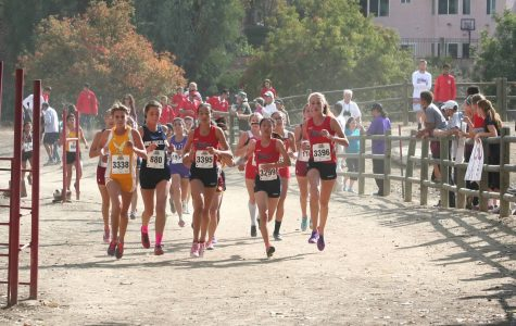 YLHS Women's Cross Country