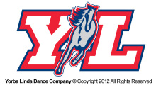 The logo that is printed on one of Dance Company shirts that you can buy.