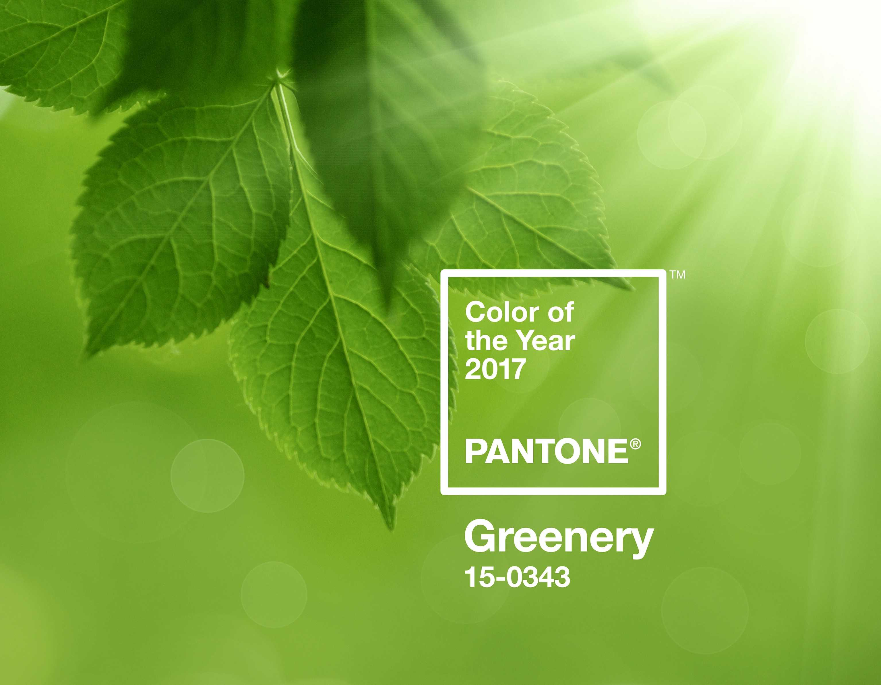 Greenery is 2017's chosen Color of the Year