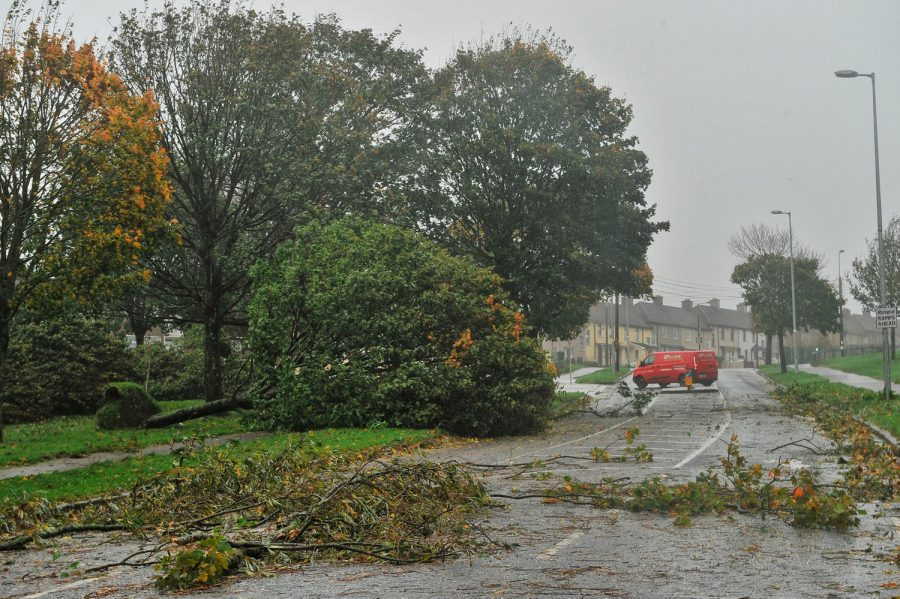 Fallen trees in Farranree during as a result of Hurricane Ophelia.