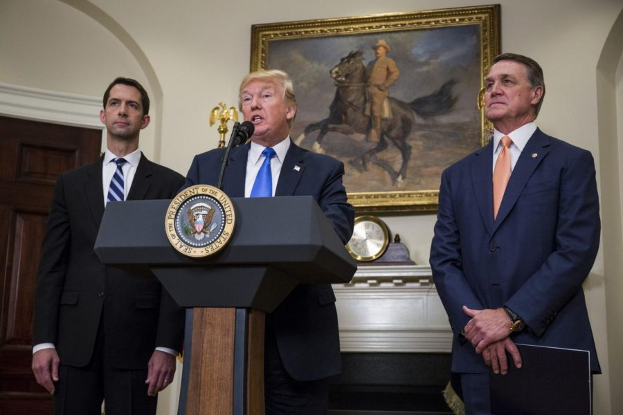 Sens. Tom Cotton (R-AR) and David Perdue (R-GA) stand with President Trump and deny accusations made against him.