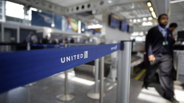 A 10-month old French bulldog puppy dies on an United flight.