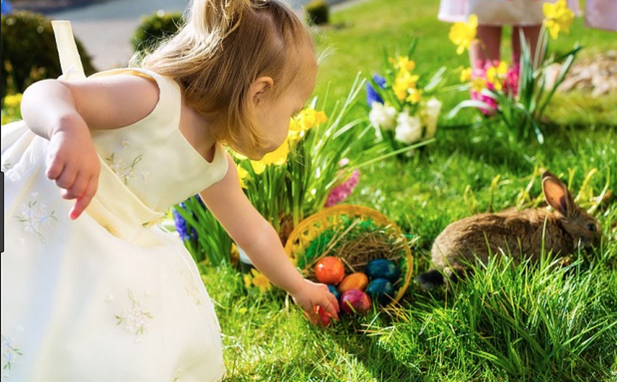 In America it is a tradition for young kids to look for hidden Easter eggs.