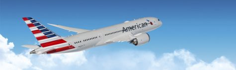Family Sues American Airlines When Woman Dies from Cardiac Arrest on Flight