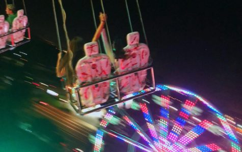 This was taken on a ride at the festival during the night, its busiest time of day.