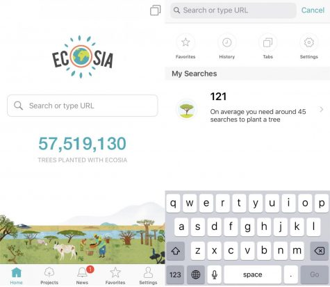 The Internet's Newest Search Engine: Ecosia