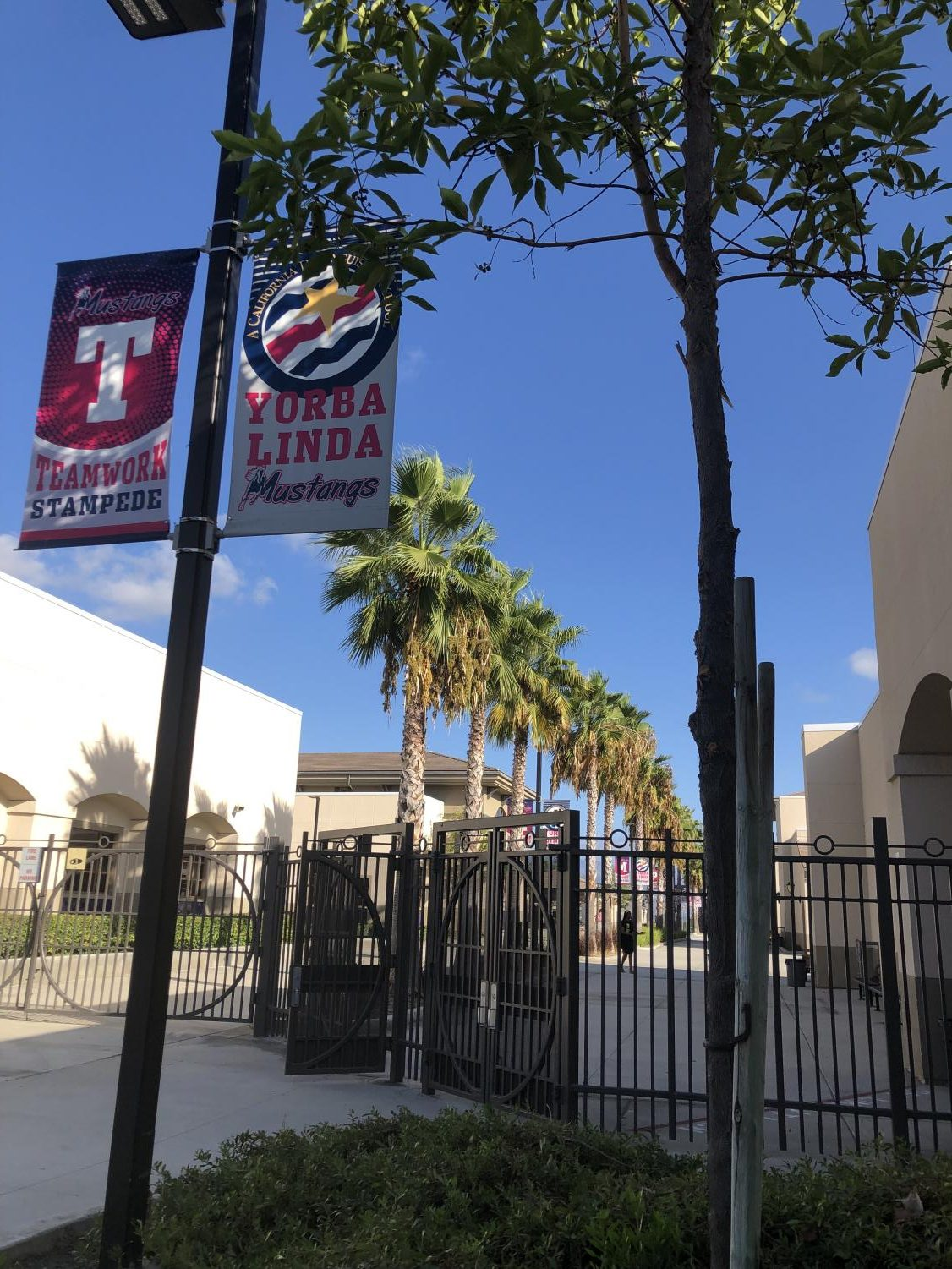 Many schools in America, such as YLHS, have implemented preventative tactics, such as surrounding gates, in order to avoid a catastrophic event from happening.