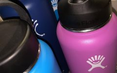 Hydro Flasks: Environmental Sustainability in a Materialistic Culture