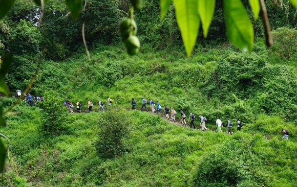 On ecotours, tourists take place in activities in remote areas, such as hiking in a rainforest.