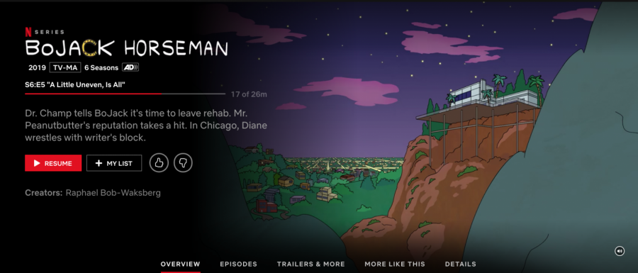 This+is+a+screenshot+of+the+title+shown+when+previewing+the+show+%22BoJack+Horseman%22+on+Netflix.
