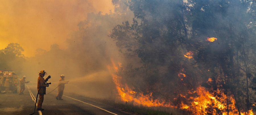 Australian wildfires spreading throughout the continent as firefighters attempt to set it out.