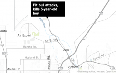 Pitbull Attacks 5 Year Old in San Bernardino
