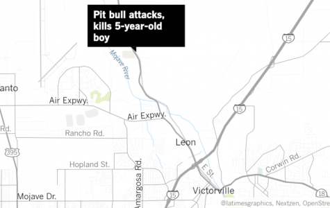 A 5-year-old was killed on February 10 by the family's pitbull dog.