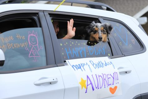 Drive-by birthday parties are one of the numerous ways people are connecting with one another while social distancing.
