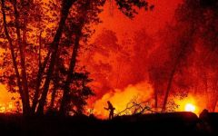 Wildfires burn across the state of California in yet another year of new records.