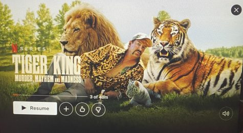 Tiger King is a hit Netflix Documentary that went viral. over quarantine.