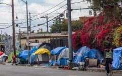 Navigation to Story: Homelessness During COVID-19: an Epidemic Within a Pandemic