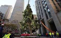 This year's Rockefeller Tree arrives to New York City looking very sparse.