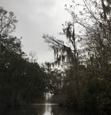 A most notable city here in the United States of America is New Orleans as they are known for their voodoo practices. The vibrant town is located down in Louisiana by the bayou.