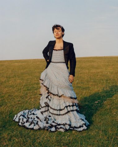 "With confidence, Harry Styles donned a long gown for his December edition Vogue shoot, proving men can wear ""feminine"" clothing."