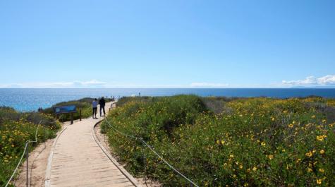 Crystal Cove Trail in Newport Beach is a beautiful hike with wonderful beach views.