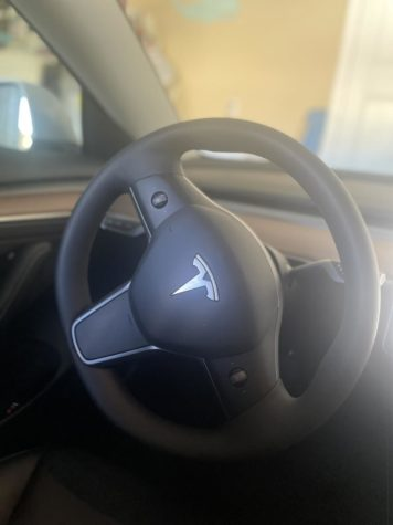 Tesla is now a common household name even though they havent spent a penny on advertisements.